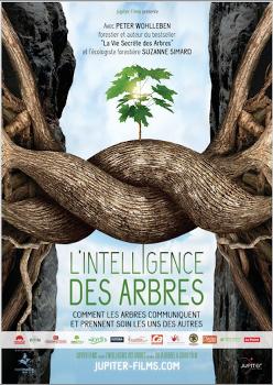 Affiche-L-Intelligence-des-arbres