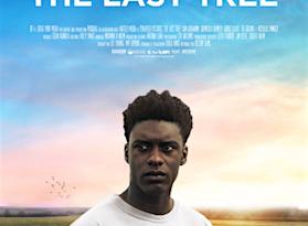 The-last-tree
