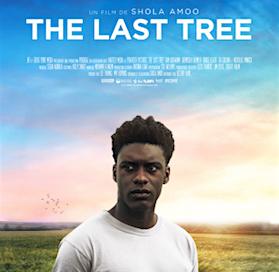 L'excellent «The last tree» en VOD à partir du 25 mars